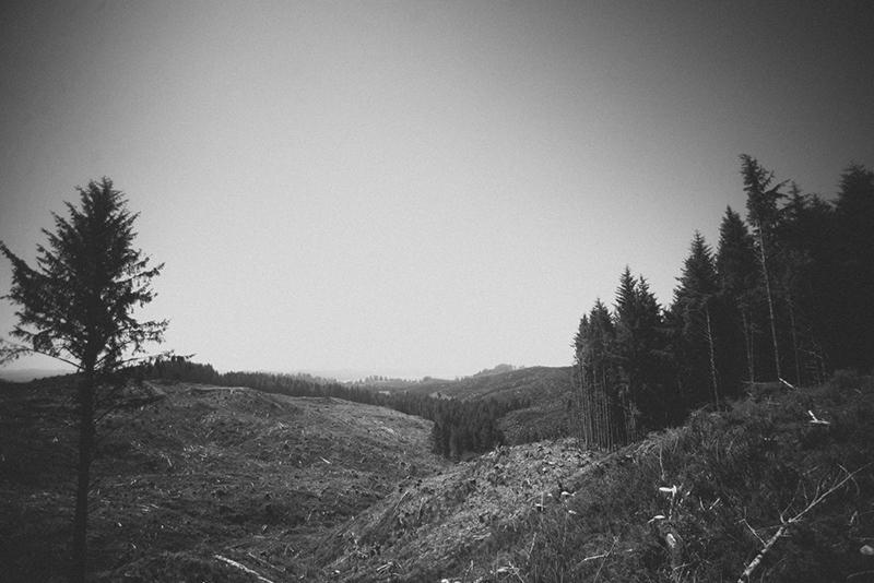 astsanfranblog-17