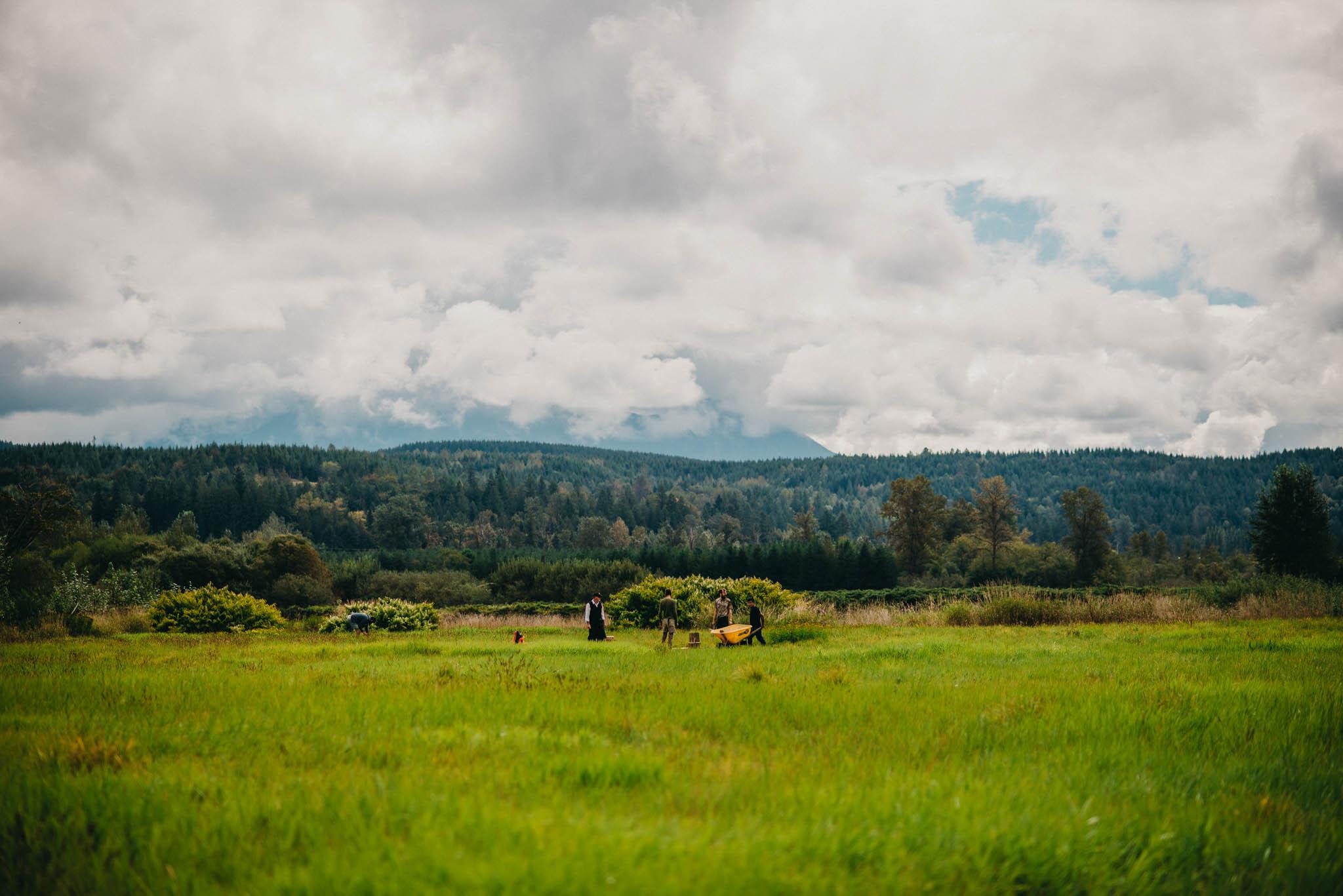 farm field in western washington