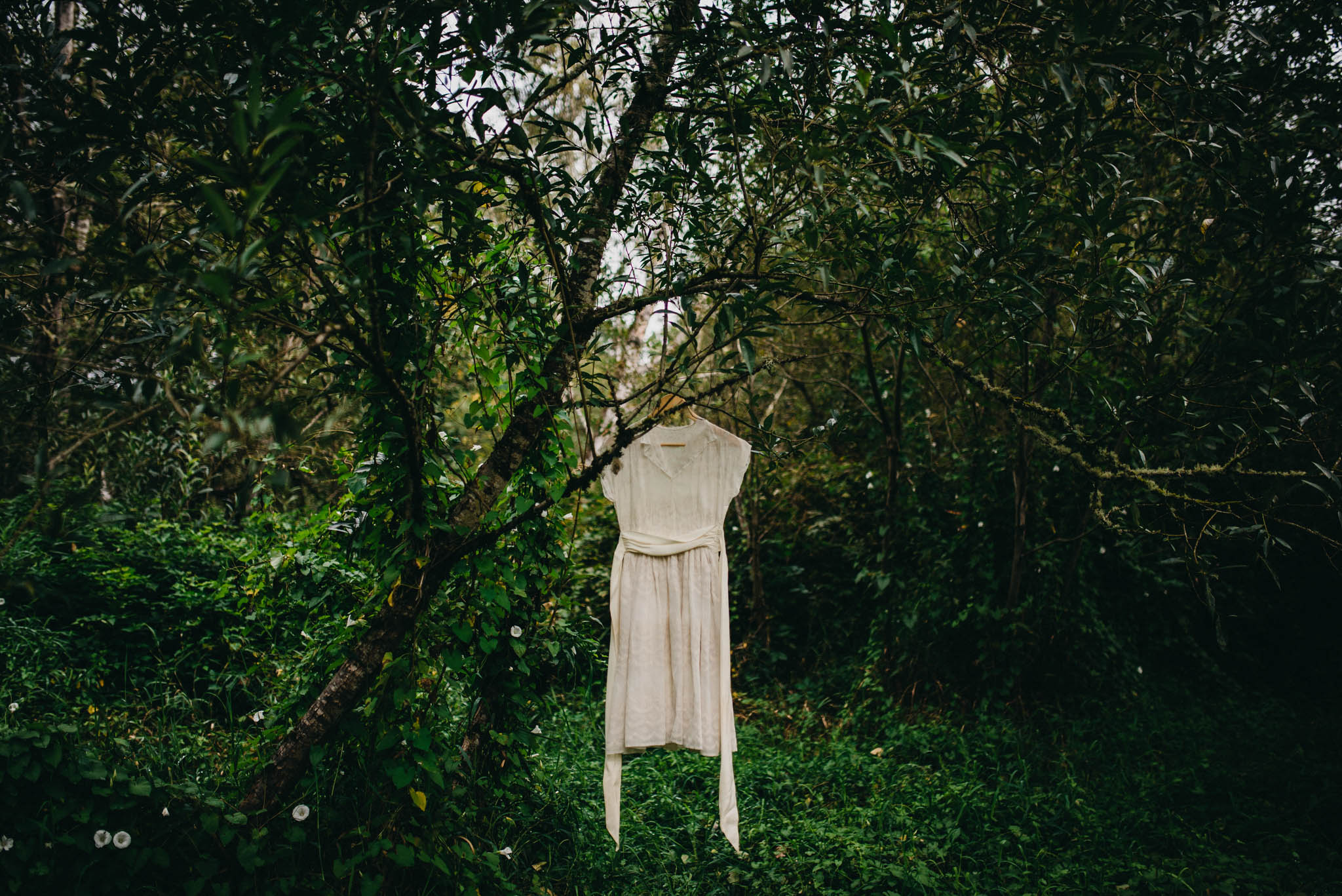 wedding dress in forest