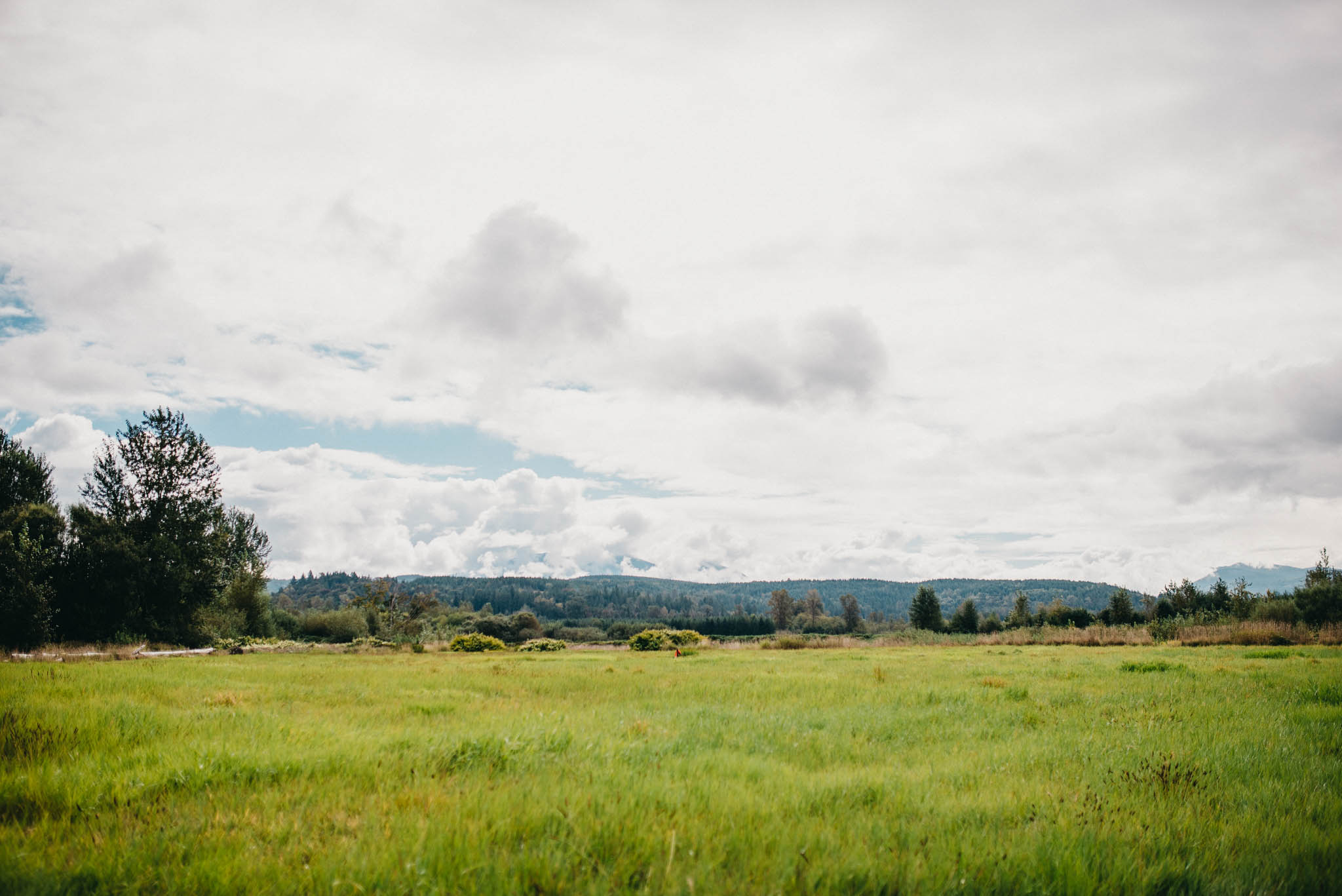 Farm Field in Western Washington