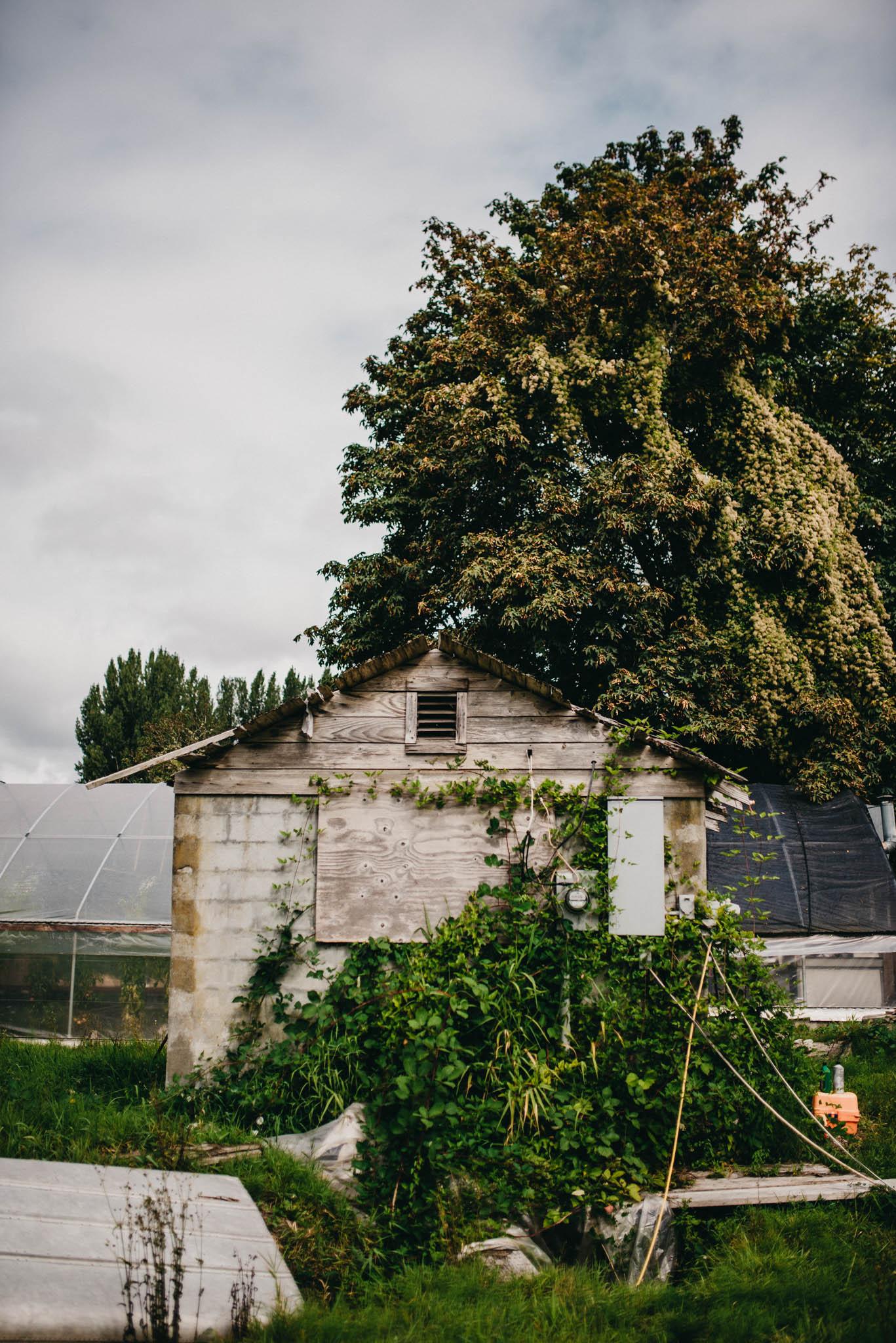 Building on farm in western washington